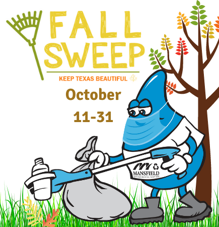 Fall Sweep Cleanup 2020