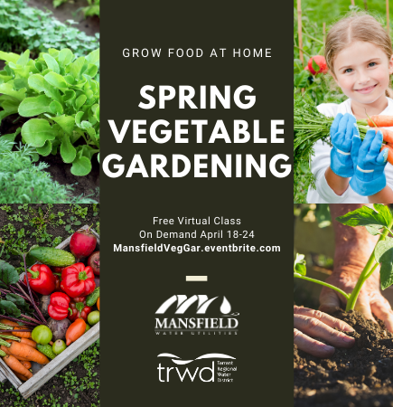 4.24.2021 Vegetable Gardening Mansfield On Demand Virtual Class