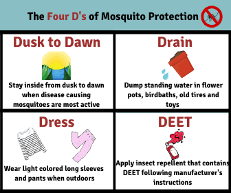 The Four Ds of Mosquito Protection (JPG)