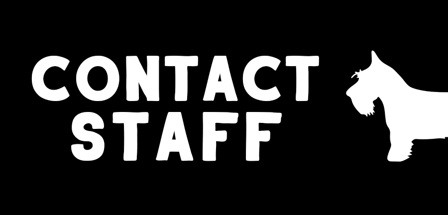 contact staff button