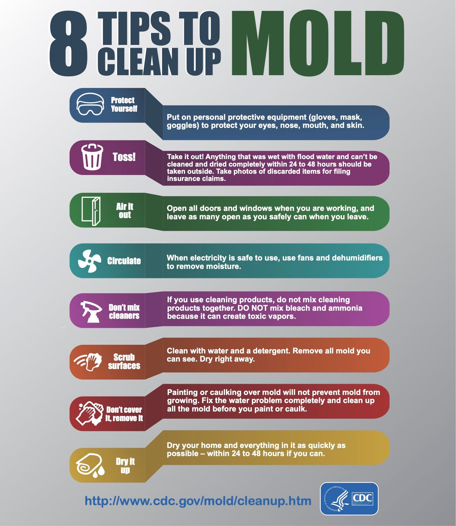 mold clean up tips